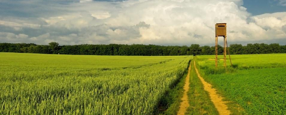 какие документы необходимы для продажи земельного участка под ижс