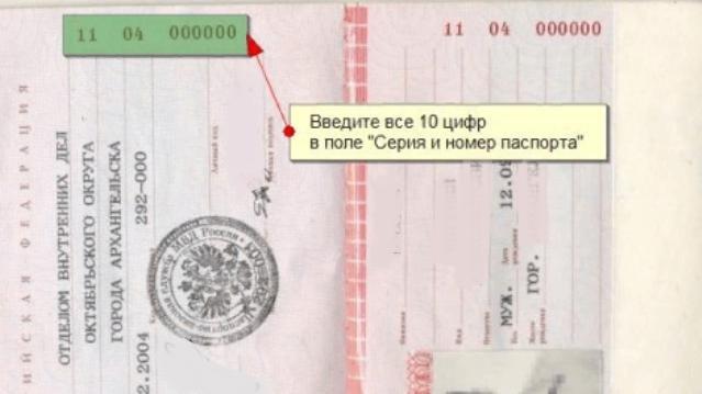 Где посмотреть номер паспорта и серию