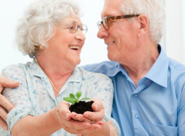 стаж для получения пенсии