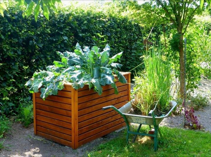 Садоводство и что такое