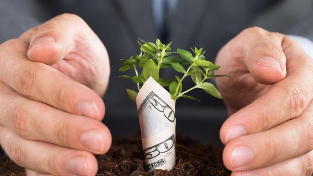 деньги на бизнес от инвесторов