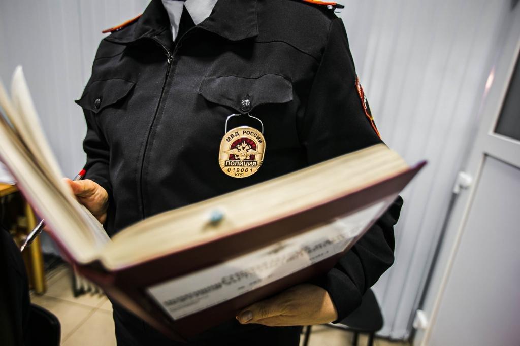 Полицейский с делом