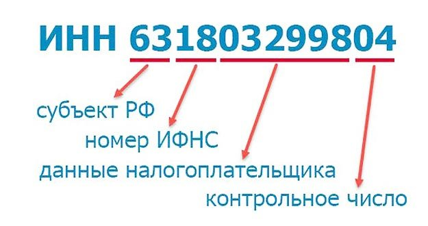 Как выглядит ИНН в РФ
