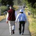 Когда можно получить накопительную часть пенсии? Федеральный закон от 28.12.2013 № 424-ФЗ «О накопительной пенсии»