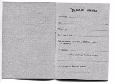Как завести трудовую книжку впервые: порядок действий, заявление, трудовой кодекс и правила оформления