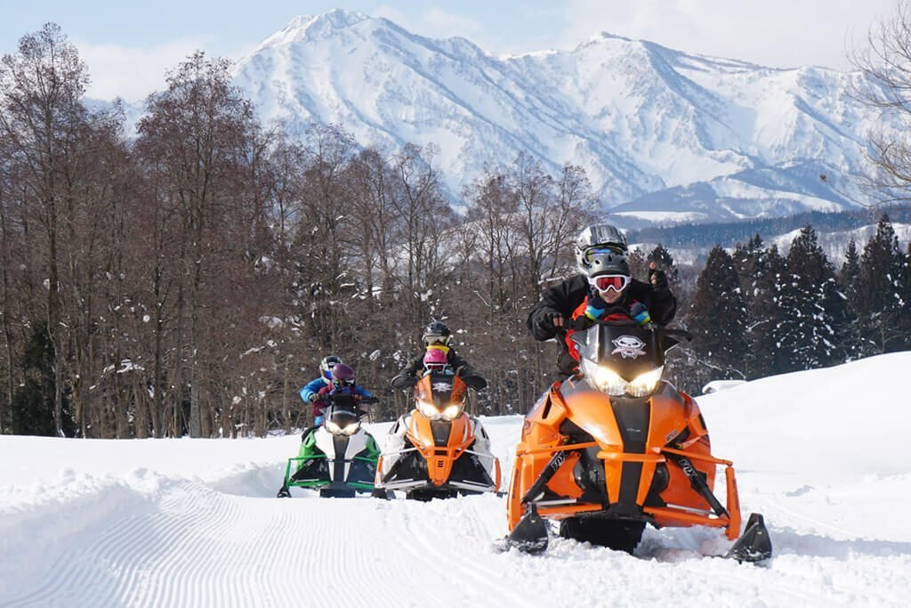 Поездка на снегоходах