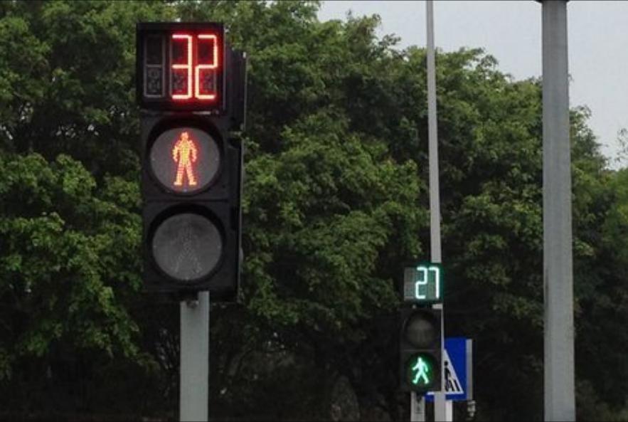 светофор для пешеходов с тайиером